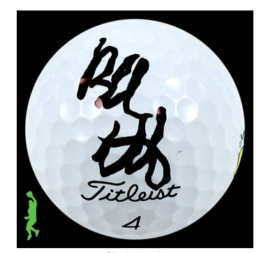 Bubba Watson Authograph Signed on Titleist Golf Ball